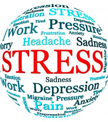 Stress Management and Mindfulness Workshops